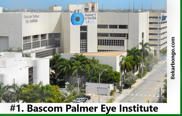 Best Eye Hospital In the world